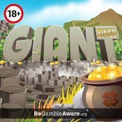 Giant Bingo Review